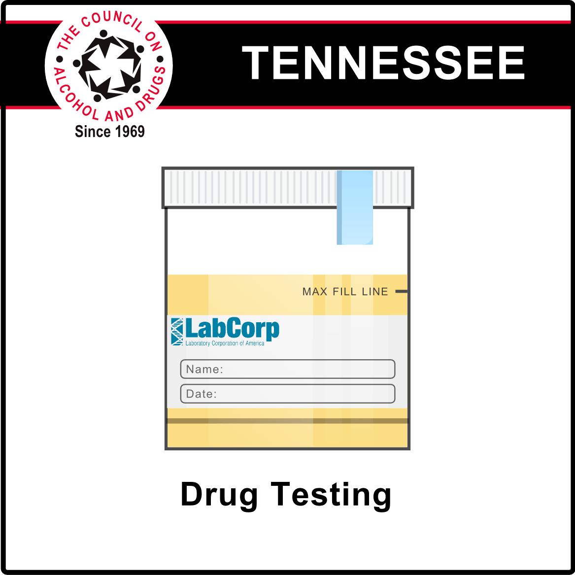 dot urine drug testing guidelines